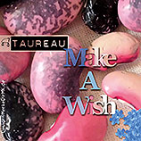 TAUREAU, Make A Wish, Cover