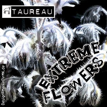 TAUREAU, Extreme Flowers, Kurt Kreft, Cover