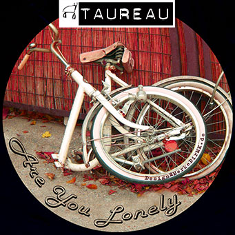 TAUREAU, Are You Lonely, Kurt Kreft, Cover